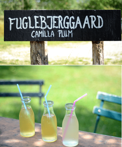 Farm to Table Fuglebjerggaard