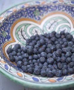 Blåbær - Honningbær- Aronia - Bærmispel