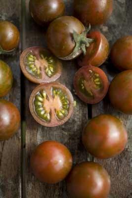 Sorte Tomater